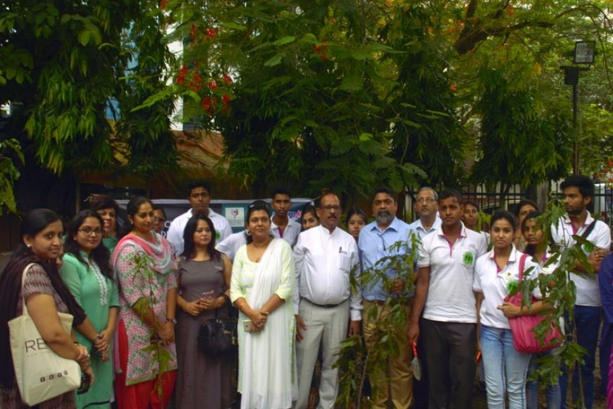 World Environment Day celebrated